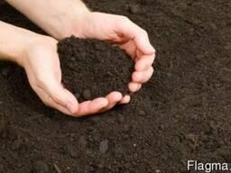 Чернозем садовый и полевой - навалом, доставка самосвалом