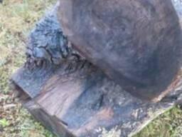 Черный мореный дуб