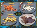 Чипсы мясные, джерки, колбаски - фото 3