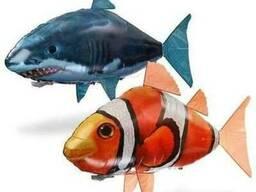 Clownfish рыба клоун на радиоуправлении. Наполненная гелие