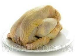 Цыпленок кукукрузный