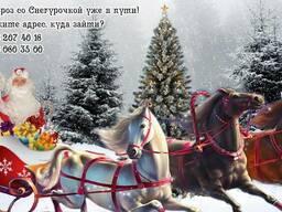 Дедушка Мороз & Снегурочка 2017-2018 На дом