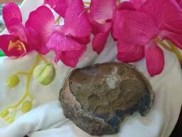 Декор камень Яйца динозавров. А8050204 . 9*9*8 см. Для террариума, аквариума.