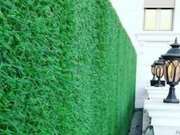 """Декоративное ограждение """"Зеленый Забор"""""""