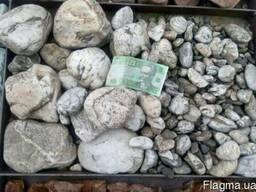 Натуральный природный камень речная галька декоративная бела