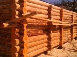 Деревянные срубы бани, дома, дачного домика