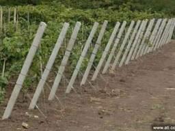Для виноградников и садов: столбики железобетонные