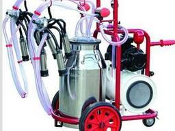 Доильный аппарат попарного доения 40л для коров турецкий