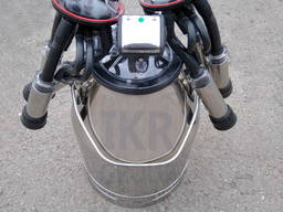 Доильный аппарат в бидон