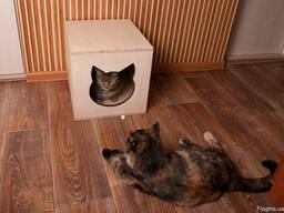 Домик для кошки из фанеры продам, Харьков, доставка - photo 3