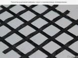 Стекловолоконная георешетка 50х50 кН - фото 1