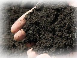 Доставка чернозема полевого, лугового, навалом и в мешках