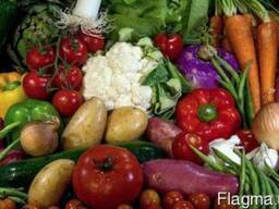 С доставкой на дом, Доставка продуктов питания