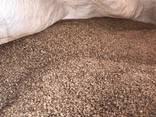 Древесные пеллеты (гранулы) или отходы линии производства завода. - фото 3
