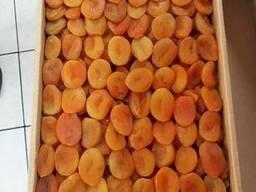 Dried Apricots, Turkey