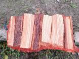 Дрова абрикосы свежепиленые - фото 5