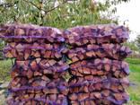 Дрова абрикосы свежепиленые - фото 6