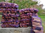 Дрова абрикосы свежепиленые - фото 8