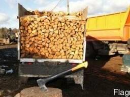 Дрова дуб рубаные доставка по васильковскому району