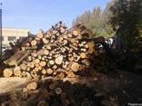 Дрова дубові рубані, кругляк, метрівки доставка - фото 3