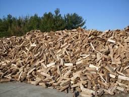 Продам дрова метрові та рубані