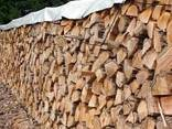 Дрова дубовые колотые для отопления. - фото 1