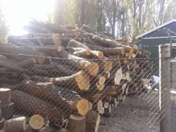 Дрова Дубовые колотые и кругляк с доставкой Буча Киев - фото 4