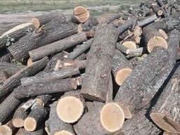 Дрова дубовые метровка, чурки - фото 4
