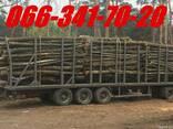 Дрова колоті, чурками дубові, соснові метрові з доставкою - photo 1
