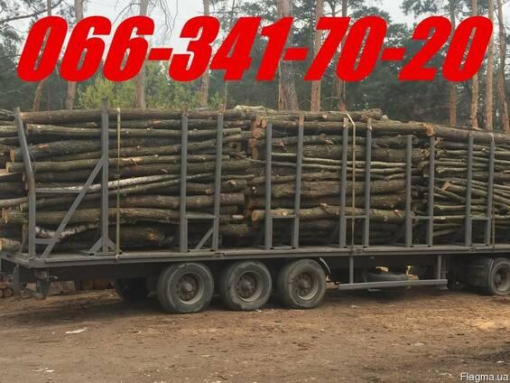 Дрова колоті, чурками дубові, соснові метрові з доставкою