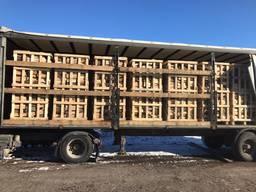 ТТН на дрова для експорта (дуб, ясен)