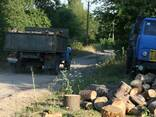 Дрова колотые,чурки( акация,дуб,береза,ольха,сосна, - фото 3