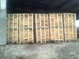 Дрова колотые каминные и древесный уголь на експорт - фото 1