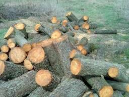 Дрова колотые от производителя(дуб, клен, акация, сосна)