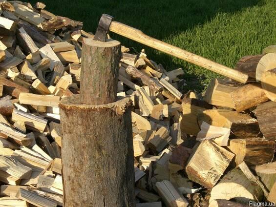 Куплю дрова оптом и в розницу метровку и колотые