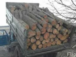 Дрова метровки - дрова метровые в Одессе.