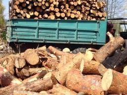 Дрова паливні: дуб, береза, сосна, осика