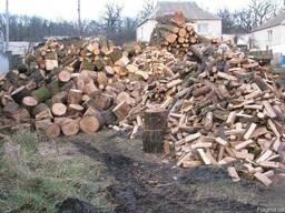 Прадаю дрова дубовые в Березане
