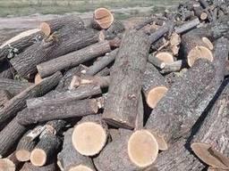 Дрова твердых пород (дуб, клен, ясень, вяз, береза) в чурках