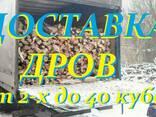 Дубовые колотые дрова, акация, ольха, сосна. Низкие цены! - фото 1