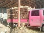 Дубовые колотые дрова, акация, ольха, сосна. Низкие цены! - фото 3