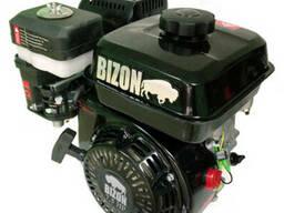 Двигатель BIZON 170F (бензин 6.5 л.с., под шпонку с 2-х руч.