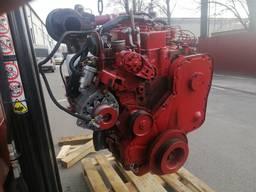 Двигатель CASE 2166 двигун кейс 2188