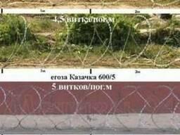 Егоза ТМ  - колючее спиральное заграждение