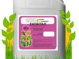 Ековітал бактеріальний Інокулянт бобових культур та сої - фото 1