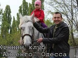Экскурсии к лошадям