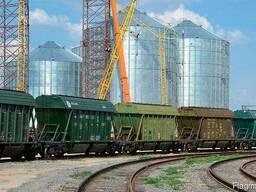 Экспедиторские услуги по перевозке зерновых жд транспортом