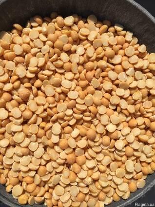 Экспорт гороха колотого шлифованного от производителя