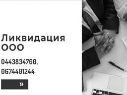 Експрес-ліквідація підприємства за 1 день Київ.