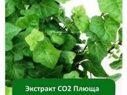 Экстракт СО2 Плюща